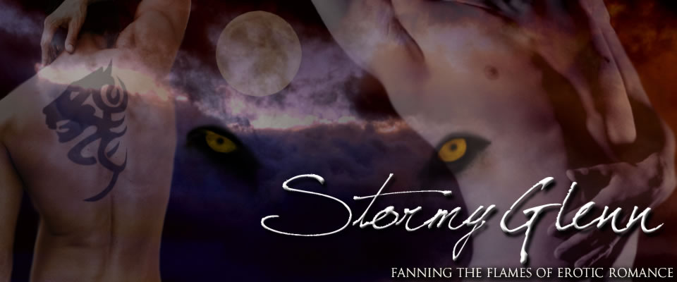Stormy Glenn, Fanning the Flames of Erotic Romance